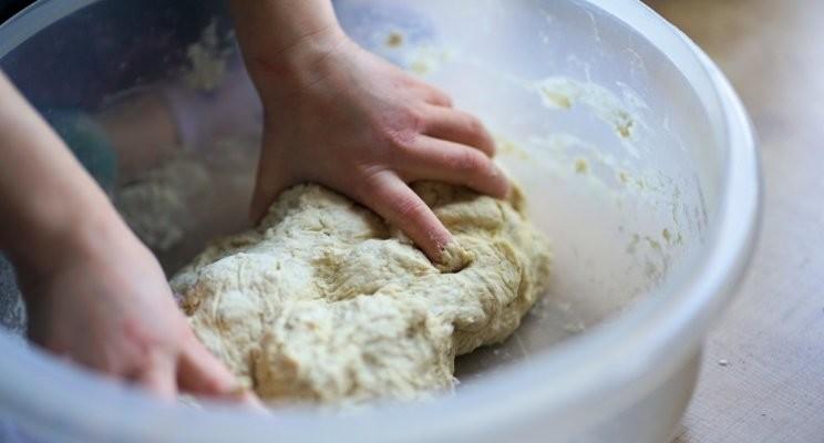 No Food is Safe: How E.Coli Gets Into Flour